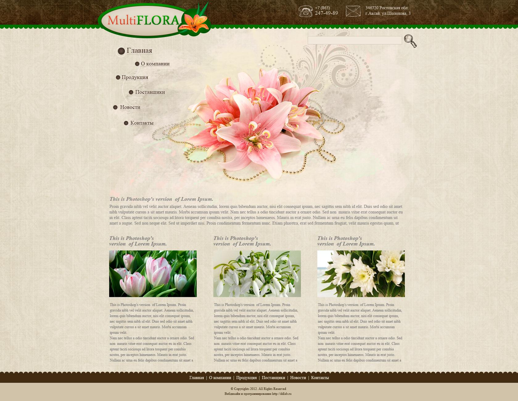 Дизайн сайта-визитки в Ростове