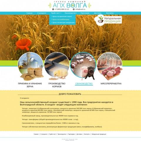 Разработка сайта визитки агрокомплекса АПХ Волга