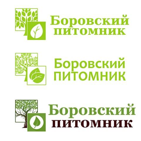 Создание логотипа для Боровского питомника растений